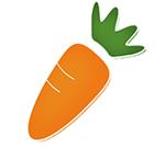 萝卜家园u盘启动盘制作工具 v6.9.4 极速版