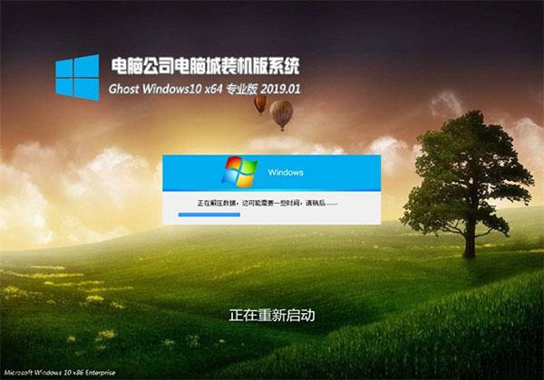 电脑公司Ghost Win10 X64 超纯专业版 v2019.01